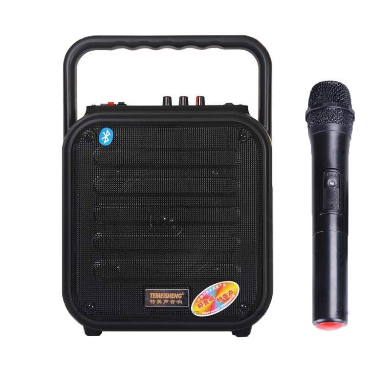 Loa karaoke mini Temeisheng A6-4